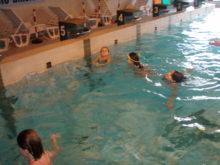 Plavání - c.-4.jpg