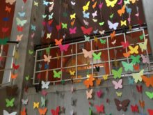 Motýli - Motyli-2.jpg