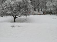 zima - IMG_20190110_131339.jpg