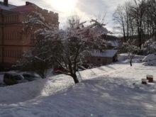 zima - IMG_20190111_134706.jpg