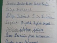 novakova - Domaci-vzdelavani-15-2