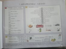 novakova - Domaci-vzdelavani-3
