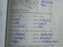 novakova - Domaci-vzdelavani-4