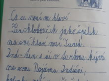 novakova - Domaci-vzdelavani-7