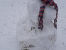 zima - 20210106_141932